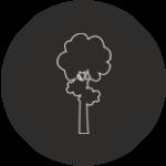 Naturelle Icon
