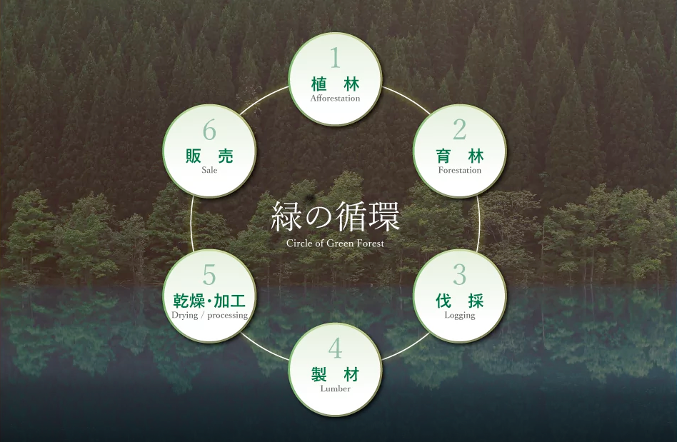 Nakamoto principles of forest management