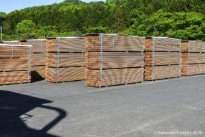 Piles of wood